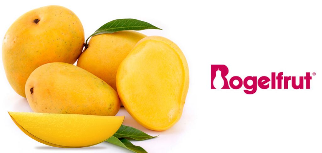 RogelFrut – Mango pure'